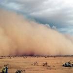 sand storm_n