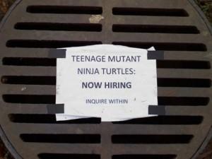 ninja-turtles-hiring
